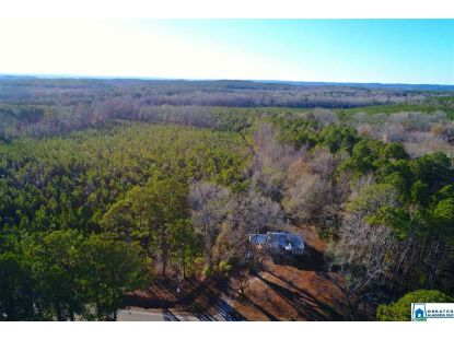 8827 OLD HWY 231 Rockford, AL MLS# 891354