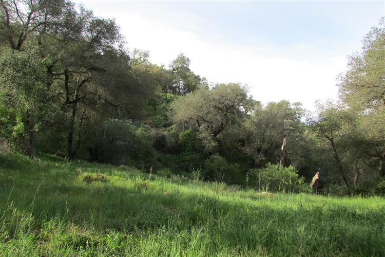 Mountainbrook Road, Santa Ysabel, CA 92070