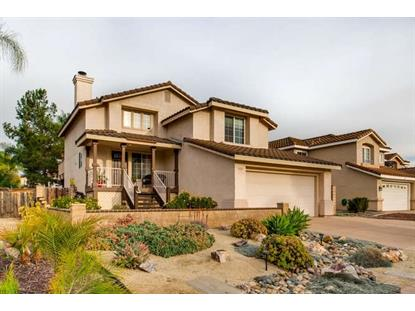 319 River Trail, Santee, CA