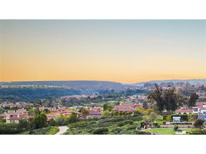 6575 Little McGonicle Ranch San Diego, CA MLS# 190012919