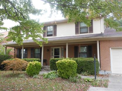 313 Chippendale Ct Louisville, KY MLS# 1460346