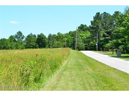 000 Cave Heights Ln Falls of Rough, KY MLS# 1477748