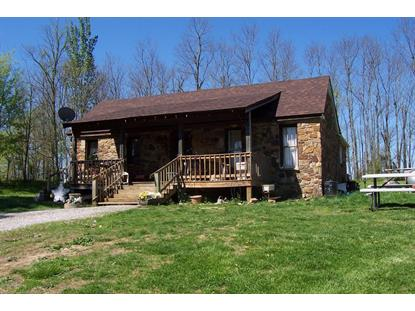 219 Pleasant Run Rd Falls of Rough, KY MLS# 1502121