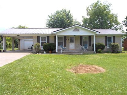 104 Moon Ave, Leitchfield, KY