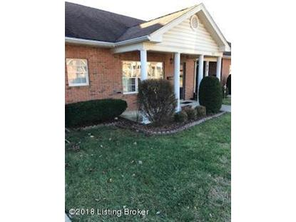 304 CHRISTIAN VILLAGE Cir Louisville, KY MLS# 1521205