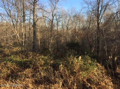 544 Board Cemetery Rd Custer, KY MLS# 1522168