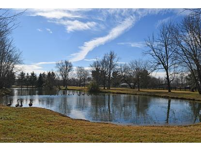 Lot 20 The Breakers at Prospect  Prospect, KY MLS# 1543132