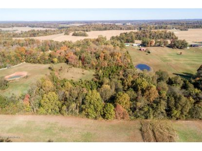 0 S Cedar Springs Rd Palmyra, IN MLS# 1572037