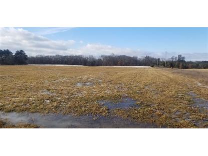 10.89 Ac 17th Dr  Wautoma, WI MLS# 1847851