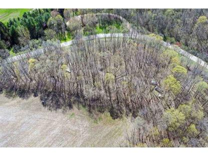 4 Ac County Road NN  Cazenovia, WI MLS# 1849535