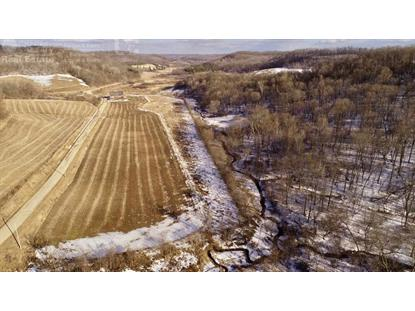 62.5 Ac Wheat Hollow Rd  Cazenovia, WI MLS# 1852144