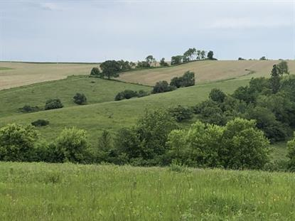 35 Ac Weidenfeller Rd  Mineral Point, WI MLS# 1860251