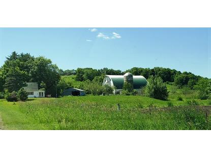 18780 County Hwy BR  Richland Center, WI MLS# 1860701