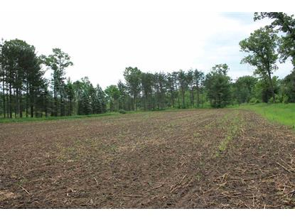 70 AC County Road B  Wautoma, WI MLS# 1861306