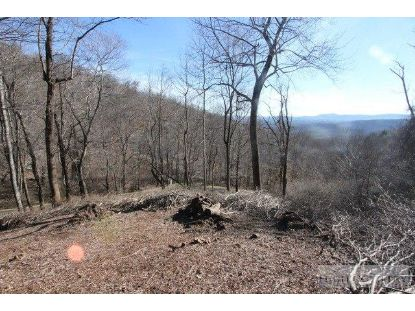 Lot 117 Point Lookout Lane Independence, VA MLS# 194730