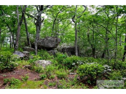 Lot P1&2 Point Lookout Lane Independence, VA MLS# 195307