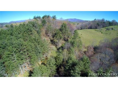 TBD Dixie Road Independence, VA MLS# 206349