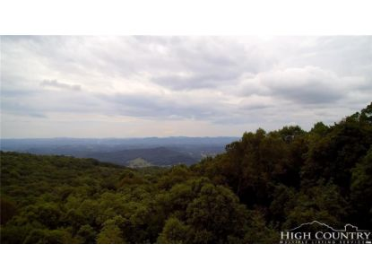 T-14 Point Lookout Lane Independence, VA MLS# 209748