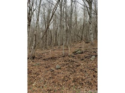 TBD Highlands Parkway Mouth of Wilson, VA MLS# 211773