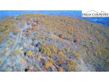 P-17 Point Lookout Lane Independence, VA MLS# 213032