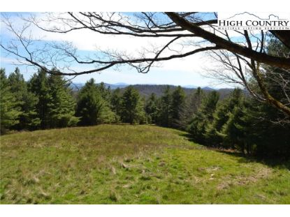 TBD Panther Creek Road Troutdale, VA MLS# 221691