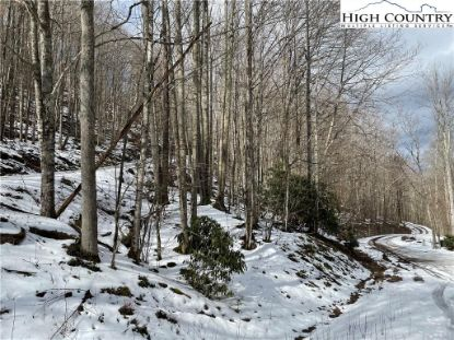 Lot 10 Buckeye Ridge Road Beech Mountain, NC MLS# 228477