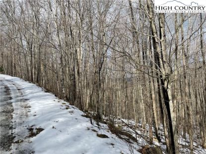 Lot 11 Buckeye Ridge Road Beech Mountain, NC MLS# 228480