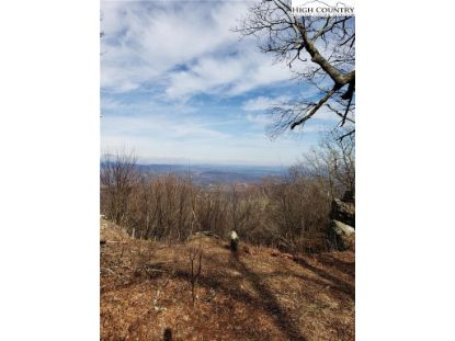 P-3 Point Lookout Lane Independence, VA MLS# 228616