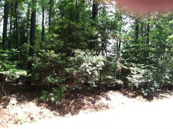 Lot 80 SWAN DR, Machipongo, VA 23405