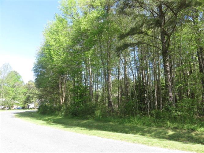 Lot 18 YEO NECK RUN, Melfa, VA 23410
