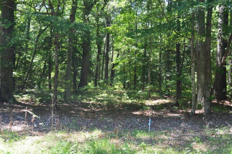 Lot 9 WELLINGTON NECK RD, Franktown, VA 23354