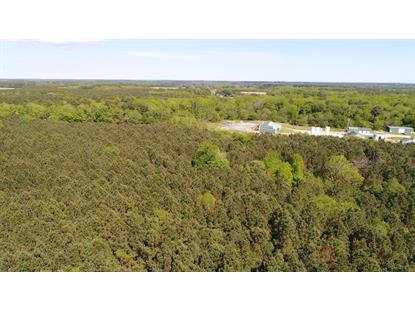 0 LANKFORD HWY  Belle Haven, VA MLS# 40680