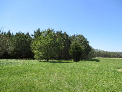 4 MUDDY CREEK RD  Bloxom, VA MLS# 43358