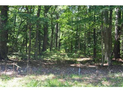 Lot 9 WELLINGTON NECK RD , Franktown, VA