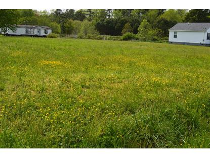 lot E SEALEY ROAD  Birdsnest, VA MLS# 47904