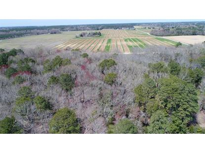 Lot 1 TERRAPIN STATION RD  Belle Haven, VA MLS# 49529
