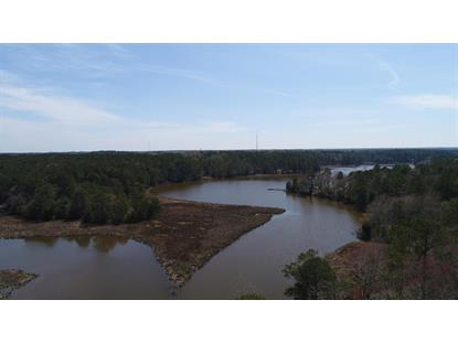 Lot 3 TERRAPIN STATION RD  Belle Haven, VA MLS# 49531