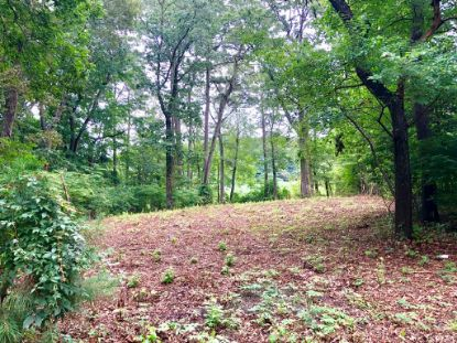 Lot # 1 WALLOPS MILLPOND RD  New Church, VA MLS# 52071