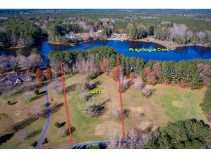 Lot 12 RED BANK LN  Melfa, VA MLS# 53094