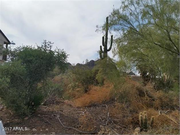 10444 E La Palma Avenue, Gold Canyon, AZ 85118 - Image 1