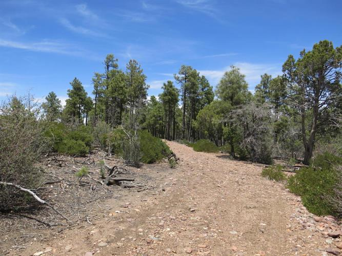 4305 FS 139A FOREST SERVI Road, Clay Springs, AZ 85923