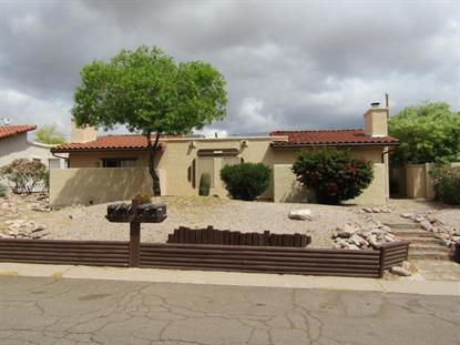 9870 E La Palma Avenue, Gold Canyon, AZ