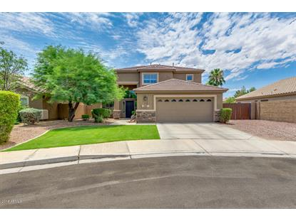 793 W CANARY Way, Chandler, AZ