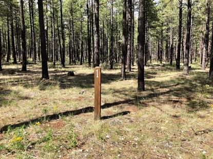 9598 SIERRA SPRINGS Drive Pinetop, AZ MLS# 5937291