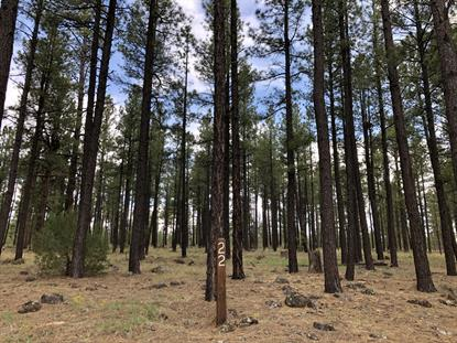 9563 SIERRA SPRINGS Drive Pinetop, AZ MLS# 5937811