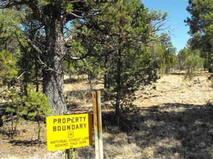6479 WHISPERING PINE Drive Happy Jack, AZ MLS# 5943420