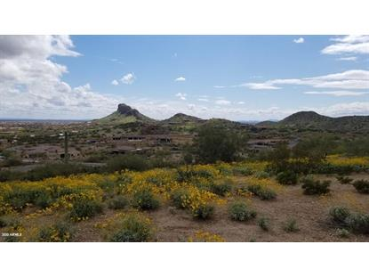 9357 E SKYLINE Trail Gold Canyon, AZ MLS# 6054267