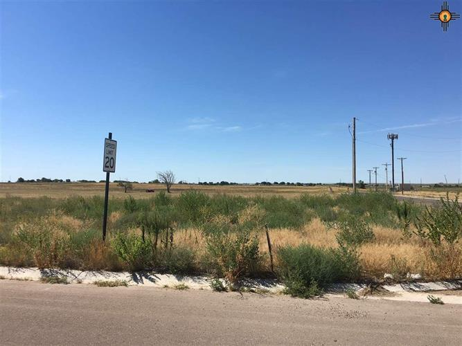 1923 Dillonwood Dr, Portales, NM 88130