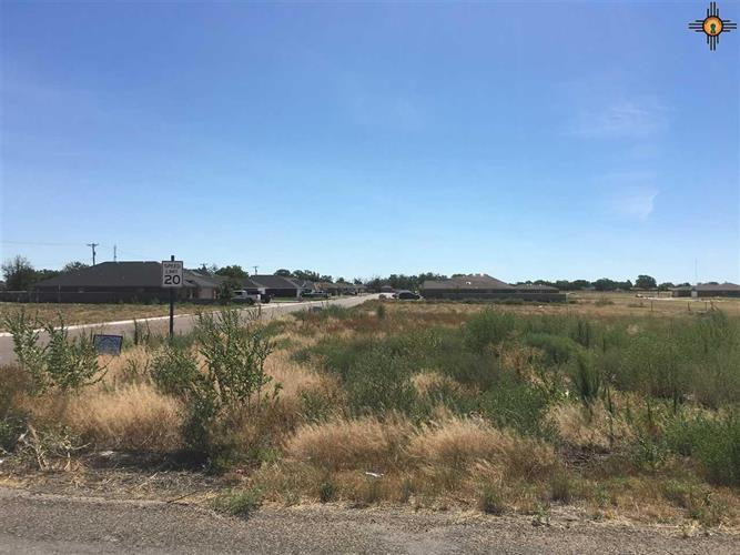 1921 Dillonwood Dr, Portales, NM 88130