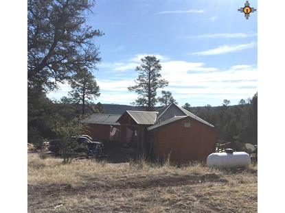 33 Bear Drive, Reserve, NM